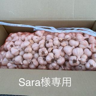 青森県産 乾燥にんにく 10kg Sサイズ(野菜)