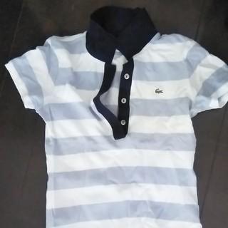 LACOSTE - LACOSTE ポロシャツ
