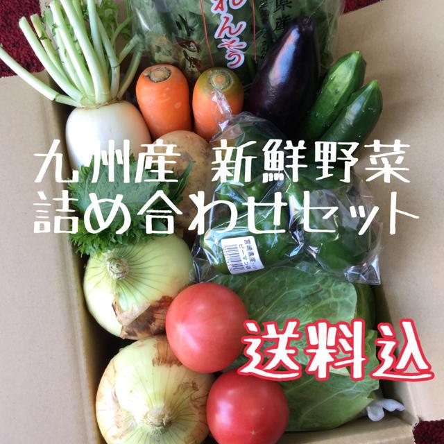 九州産 新鮮野菜 詰め合わせセット 食品/飲料/酒の食品(野菜)の商品写真