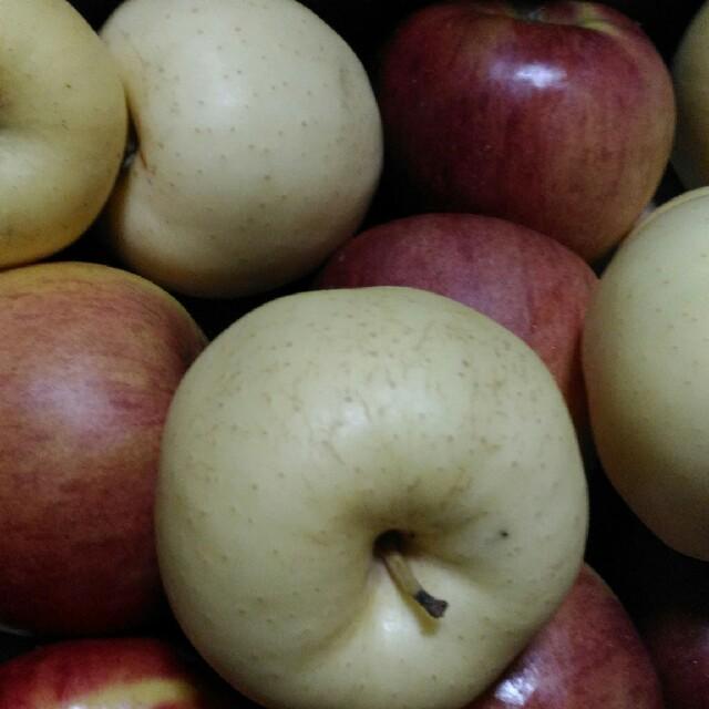 yukari様専用 食品/飲料/酒の食品(フルーツ)の商品写真