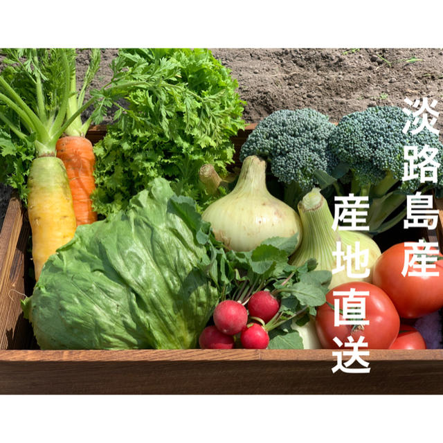 淡路島産☆野菜セット☆80サイズ 食品/飲料/酒の食品(野菜)の商品写真