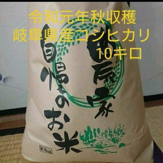 コシヒカリ 10キロ 岐阜県産 食品/飲料/酒の食品(米/穀物)の商品写真