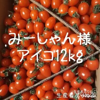 みーしゃん様専用 アイコ12kg ミニトマト 鹿児島県産(野菜)