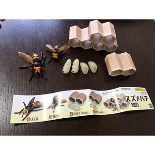 エポック(EPOCH)のスズメバチ フィギュア 雀蜂 女王蜂 働き蜂 さなぎ 幼虫 蜂の巣 ガチャ(その他)