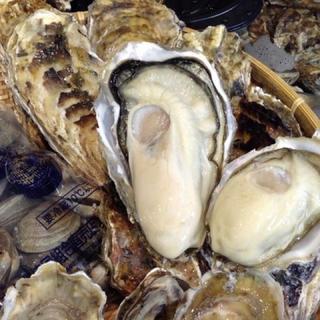 南三陸志津川産 特大殻牡蠣 Lサイズ 20個 漁師直送 全国一律送料込み