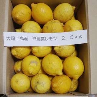 広島県大崎上島産無農薬レモン2.5kg(フルーツ)