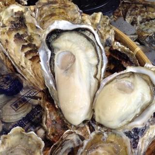 南三陸志津川産 殻牡蠣Lサイズ 20個 漁師直送 全国一律送料込み