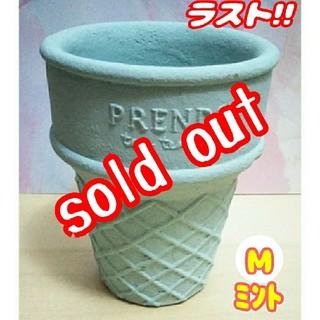 【完売】【数量限定!!】アイスコーン鉢♪ ミント:Mサイズ④多肉植物 寄せ植え (プランター)