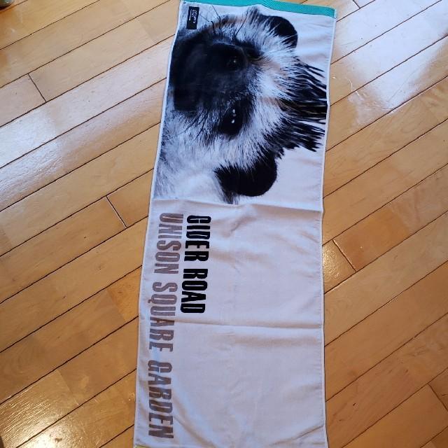 UNISON SQUARE GARDEN(ユニゾンスクエアガーデン)のユニゾン CIDER ROAD ハリネズミ タオル エンタメ/ホビーのCD(ポップス/ロック(邦楽))の商品写真