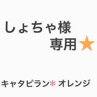 キャタピラン*オレンジ(その他)