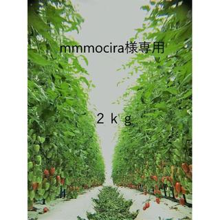 mmmociraさま 専用出品(野菜)