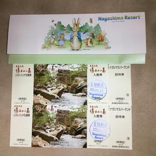 長島温泉 湯あみの島 入館券 2枚セット(遊園地/テーマパーク)