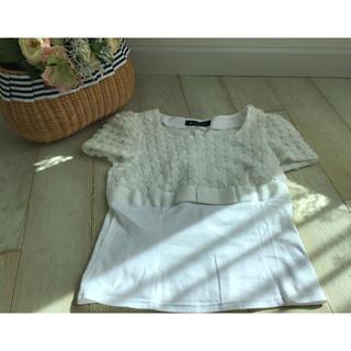 エムズグレイシー(M'S GRACY)のエムズグレイシー  Tシャツ 38サイズ   美品(Tシャツ(半袖/袖なし))