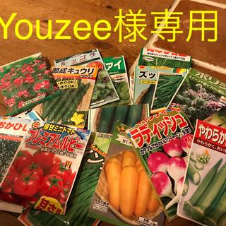 youzee様専用(その他)
