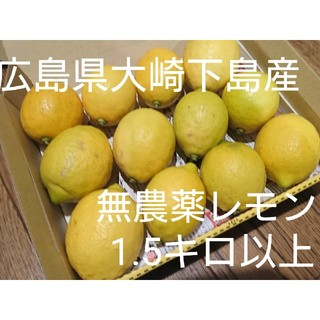 bibia様専用 追加送料代(フルーツ)