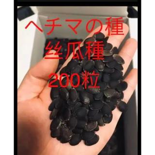 ヘチマの種丝瓜200粒(野菜)