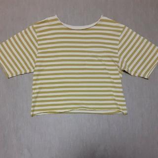 セポ(CEPO)のボーダーTシャツ Mサイズ (Tシャツ(半袖/袖なし))