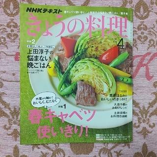 きょうの料理   4月号(๑'ᴗ'๑)