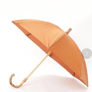 ハンター(HUNTER)の傘(傘)