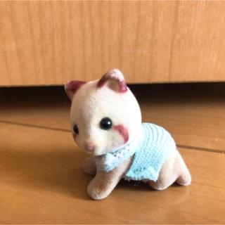 早い者勝ち シルバニアファミリー 人形 アライグマ  赤ちゃん男の子 色ハゲあり(キャラクターグッズ)