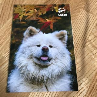 WASAO ポストカード(使用済み切手/官製はがき)