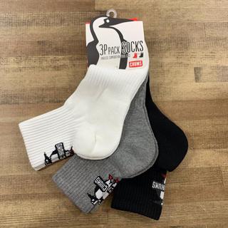 チャムス(CHUMS)の[新品] ブービーバードがかわいらしい、3足セットの靴下25~27㎝(ソックス)