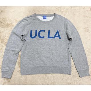 BEAUTY&YOUTH UNITED ARROWS - UCLAスウェット