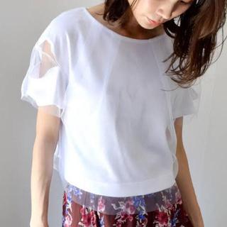 アウラアイラ(AULA AILA)のお値下げ ⭐︎ AURA アウラ ⭐︎ トップス 白Tシャツ カットソー(カットソー(半袖/袖なし))