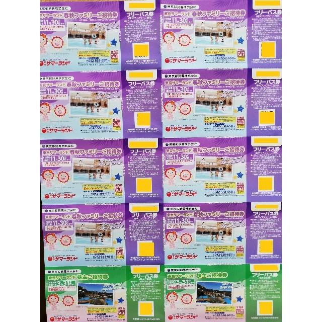 東京サマーランド  株主優待券 ★ チケットの施設利用券(遊園地/テーマパーク)の商品写真
