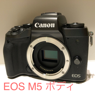 Canon - Canon EOS M5 ☆使用期間約1年☆予備バッテリー付☆箱切抜き無し☆良品