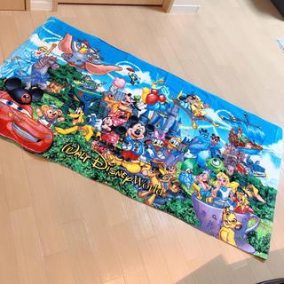 Disney - フロリダ ディズニーワールド ビーチタオル