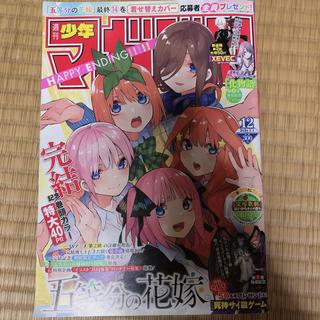 コウダンシャ(講談社)の週刊少年マガジン 5等分の花嫁(少年漫画)