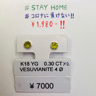 CE-46377 K18YG ピアス ベスビアナイト AANI アニ