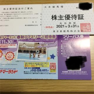 東京都競馬 株主優待