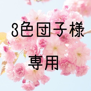 お米 令和元年 愛媛県産松山三井 白米 20㎏