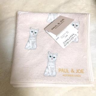 PAUL & JOE - PAUL&JOE 猫 ネコ ハンカチスマホもメガネもふけるハンカチーフ
