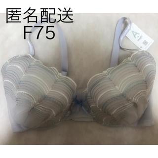 AMPHI - amphi ブラ F75 薄紫 アンフィ