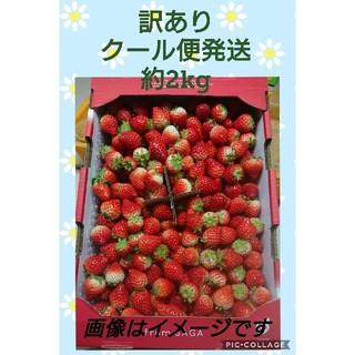 佐賀県産イチゴ「いちごさん」訳あり約2kgクール便発送 苺