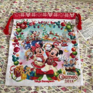 Disney - ディズニーランド クリスマス 巾着