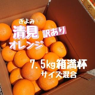 清見オレンジ 訳あり 7.5㎏箱満杯(フルーツ)