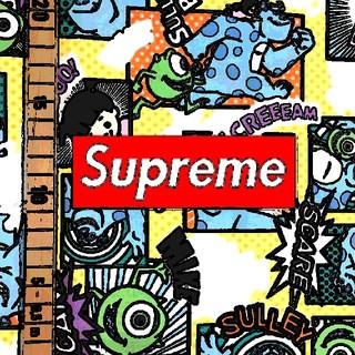 Supreme - シュプリーム supreme ヘインズ 新品 ボクサーブリーフ S 2枚
