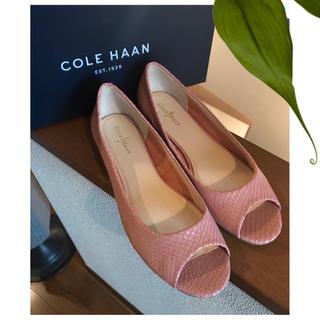 Cole Haan - 未使用! cole haan コールハーン シューズ