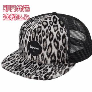 シュプリーム(Supreme)のsupreme Leopard Mesh Back 5-Panel cap(キャップ)