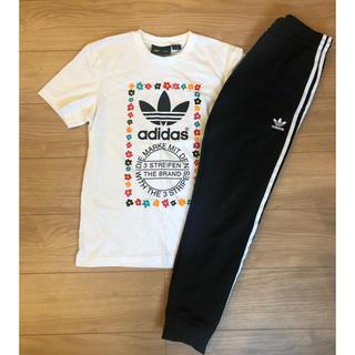 Original - adidas ファレルウィリアム コラボ★上下セット Tシャツ パンツ