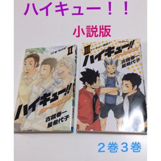 最終価格  ハイキュー  2巻3巻   ※小説版(文学/小説)