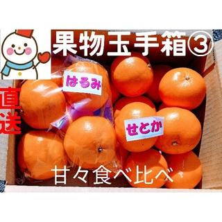 果物玉手箱③♥はるみ&せとか♥雪だるまの甘々セット