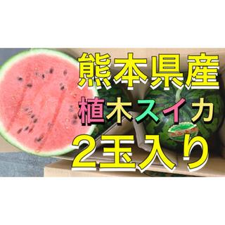 熊本県産植木スイカ2玉入り