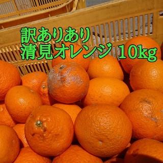みかん 清見オレンジ (フルーツ)
