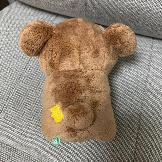 サンエックス(サンエックス)のチャイロイコグマ ぬいぐるみSサイズ エンタメ/ホビーのおもちゃ/ぬいぐるみ(ぬいぐるみ)の商品写真