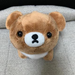 サンエックス - チャイロイコグマ ぬいぐるみSサイズ